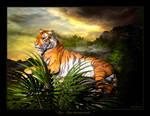 Tiger, Tiger, burning bright..