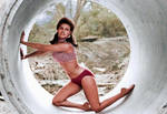 The 60's...Raquel Welch