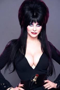 Trends of the 80's....Elvira arrives on the scene.