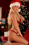 Santa!!!....I have been really good this year!!!