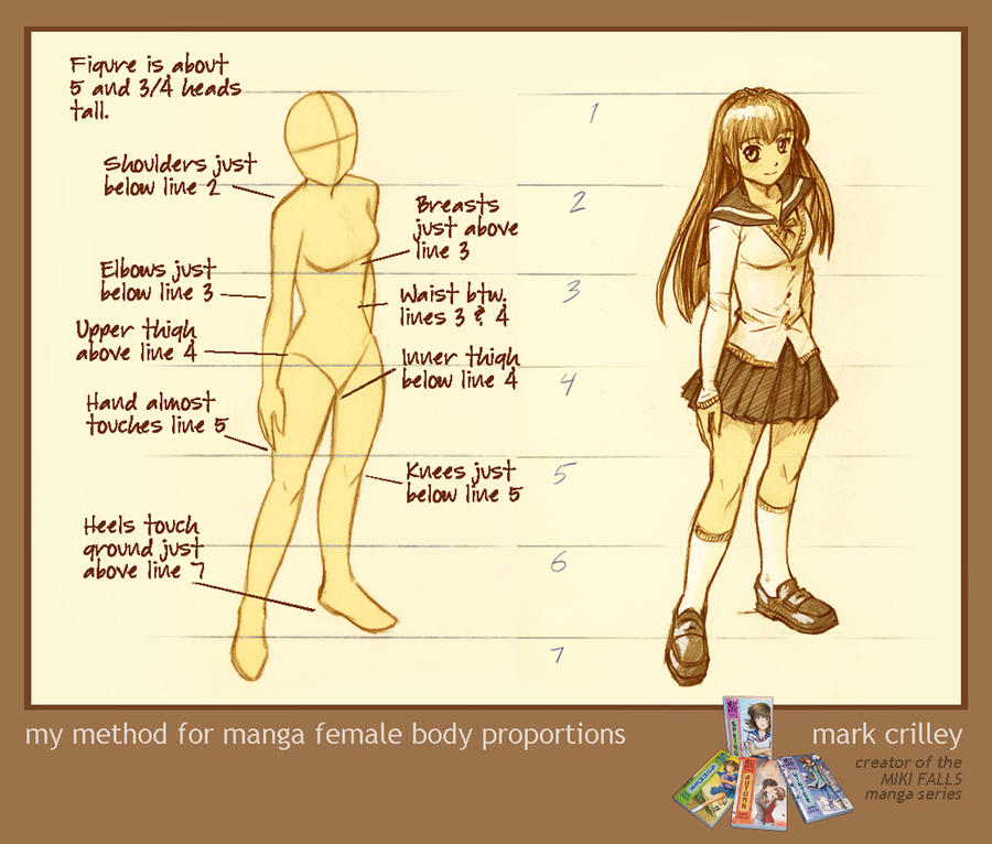 Female Body Proportions by markcrilley on DeviantArt
