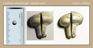 Realism Challenge: Mushroom by markcrilley
