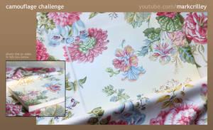 Camouflage Challenge