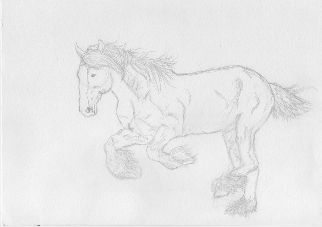 Horse #2 (sketch) by kikinight005
