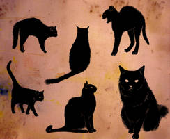 thursday is 6 black cats by Anotheroutsider