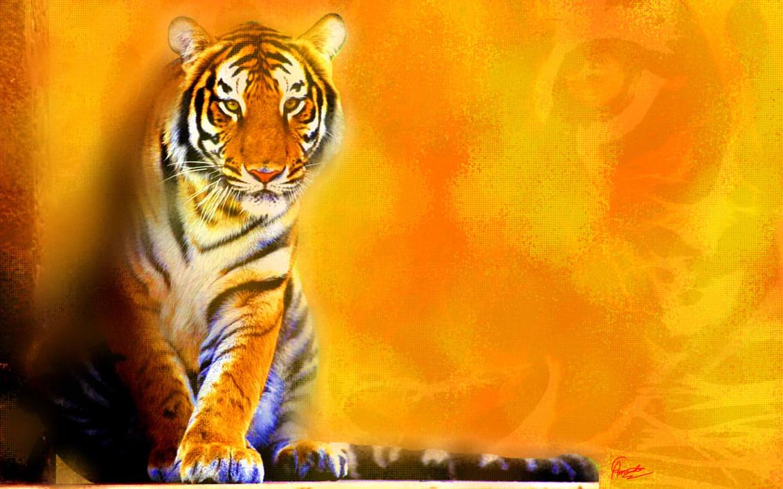 tiger backgroundamandamoustache on deviantart