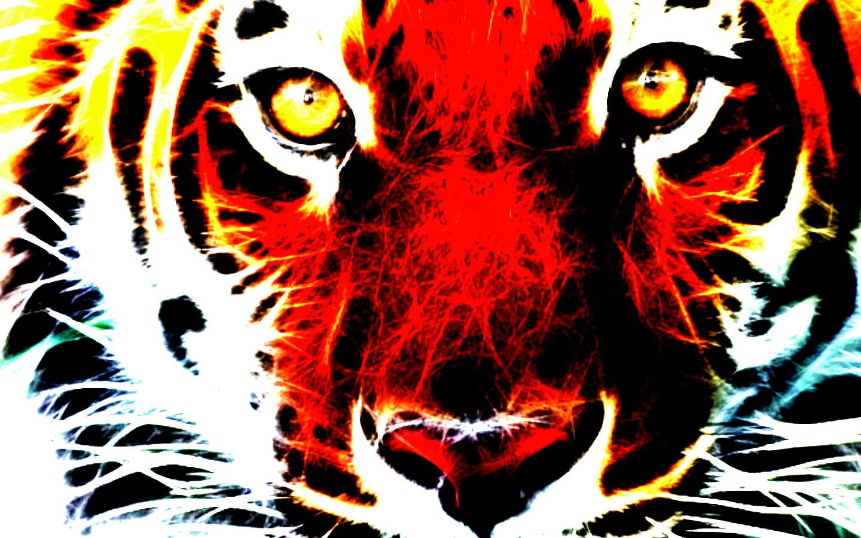 White Fire Tiger