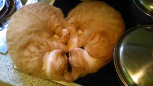 Fluffy heart X3