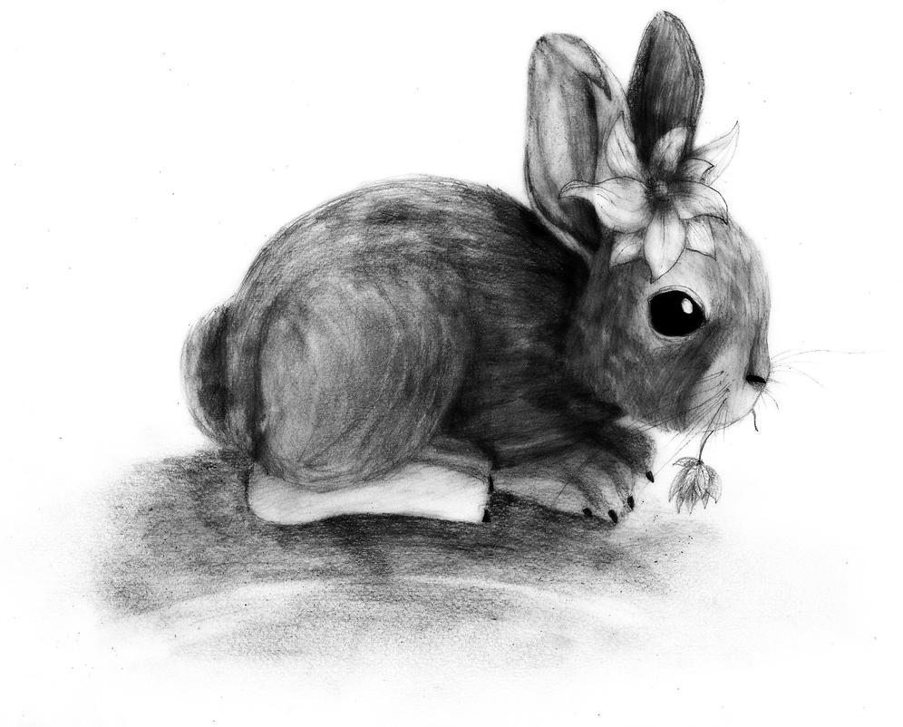 Baby bunny lady by ZalyHeartlessTigress