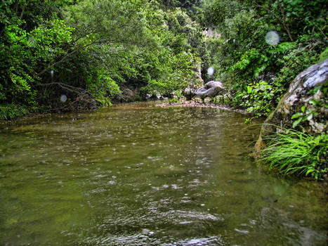 Desde el agua de Sadernes