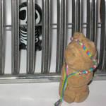 Visiting me in jail