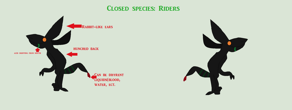 Species Ref: Riders by Zane-FazBot