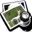 Dogo preview icon by kikayelf