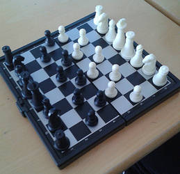Art of out boredom: the symmetry of chess