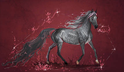 Red stars by Araxel