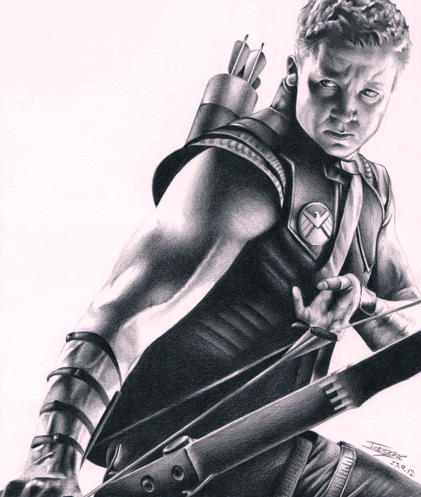 Hawkeye by OliveArtOlive