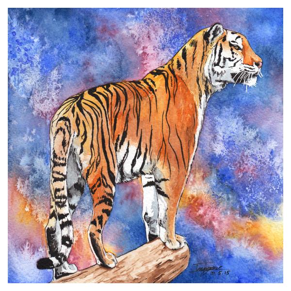 рисунок поэтапно амурский тигр