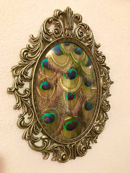 Vintage Frame with Peacock Feathers (3)