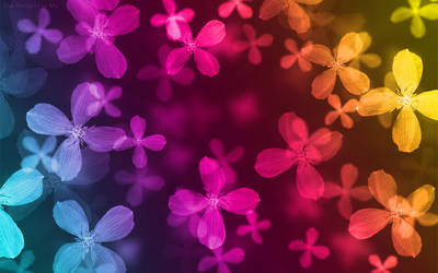Floral Wallpaper 1280x800 by thedesignforme