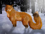 Fox in snow by Speck--Of--Dust