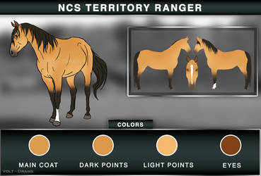 NCS Territory Ranger by Volt-Draws