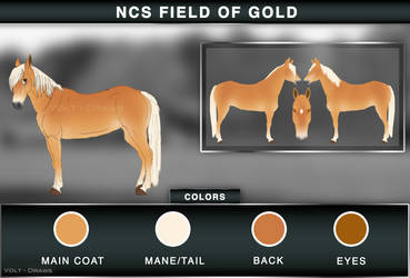 NCS Field of Gold
