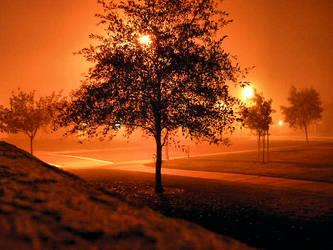 Valley Fog by Sage18