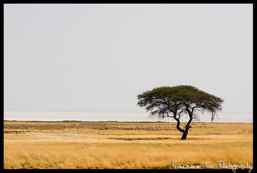Namibia Views 4 by francescotosi