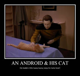 An Android and His Cat
