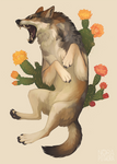 [C] Mexican wolf by norapotwora