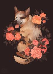 [C] Doggo