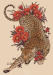 [C] Leopard