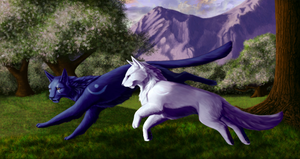 Druids Run (Full)