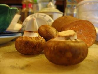 Mushrooms in Santa Cruz by marisol