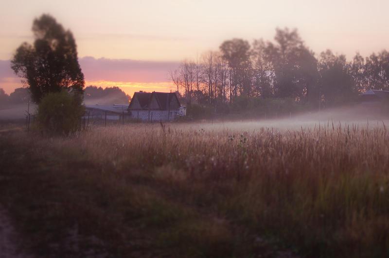 fog in morning by StargazerLZ