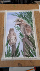 Potoo birds are meme owls by imafriendlyghost