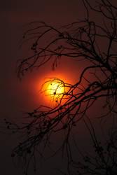 Smoky Sunset by szekley