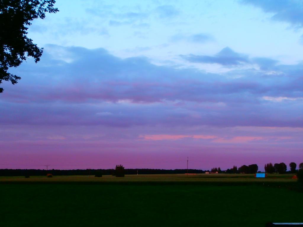 Violet sky by Vampirella2873