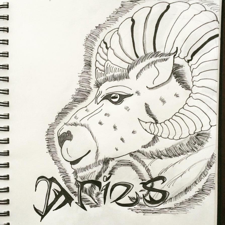 Aries by DinomanInc