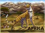 AFRICA **CONTEST**