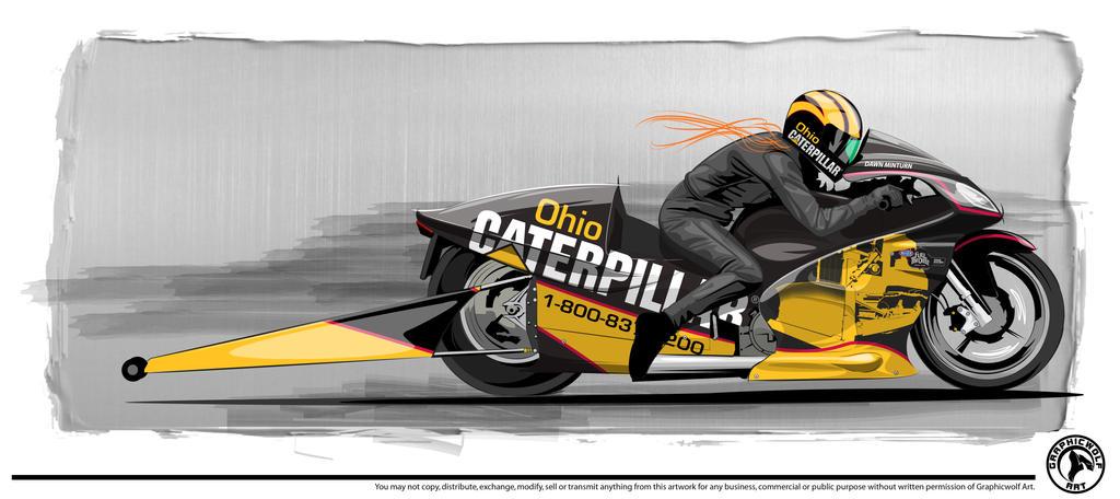 Ducati Cat