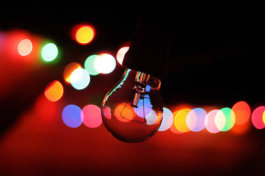 Lights and the bulb