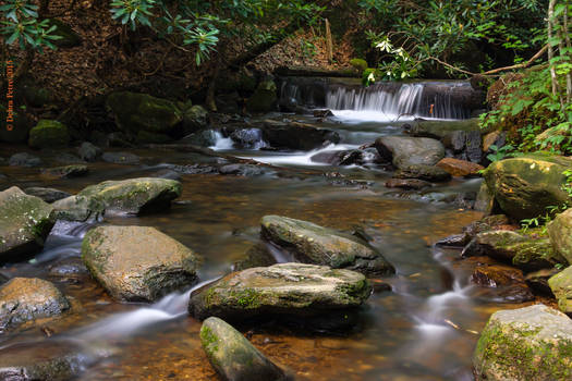 Base of Amicalola Falls II