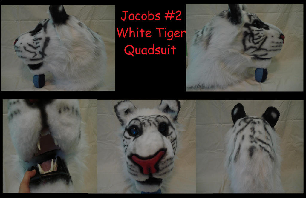 Jacobs #2 Quadsuit head by CrazyShibaLady