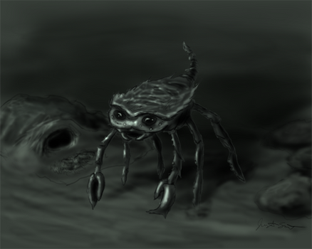 Crab-Spider-Scorpion