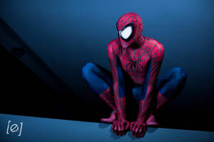 Friendly neighbourhood Spiderman