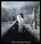One Winged Angel by Damnedin