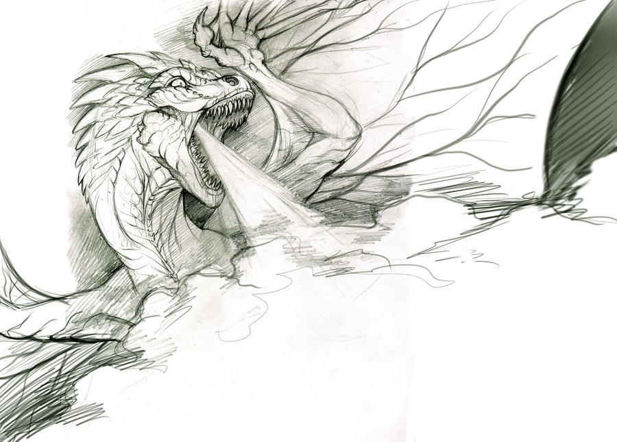 Dragon - sketch2 by Anisis