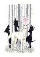 Albino by Anisis