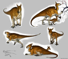 Kabara sketches by Anisis